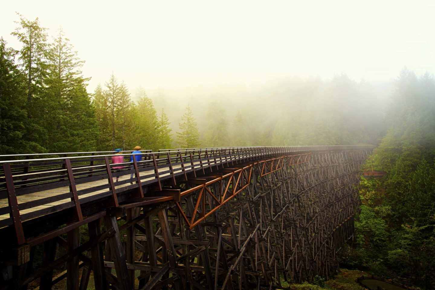 Kinsol Trestle, Vancouver Island, BC
