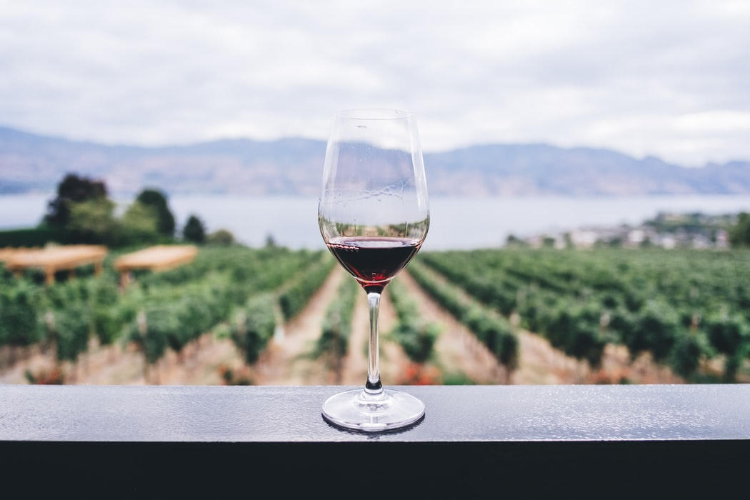 A glass of wine sitting on a surface overlooking a vineyard and lake