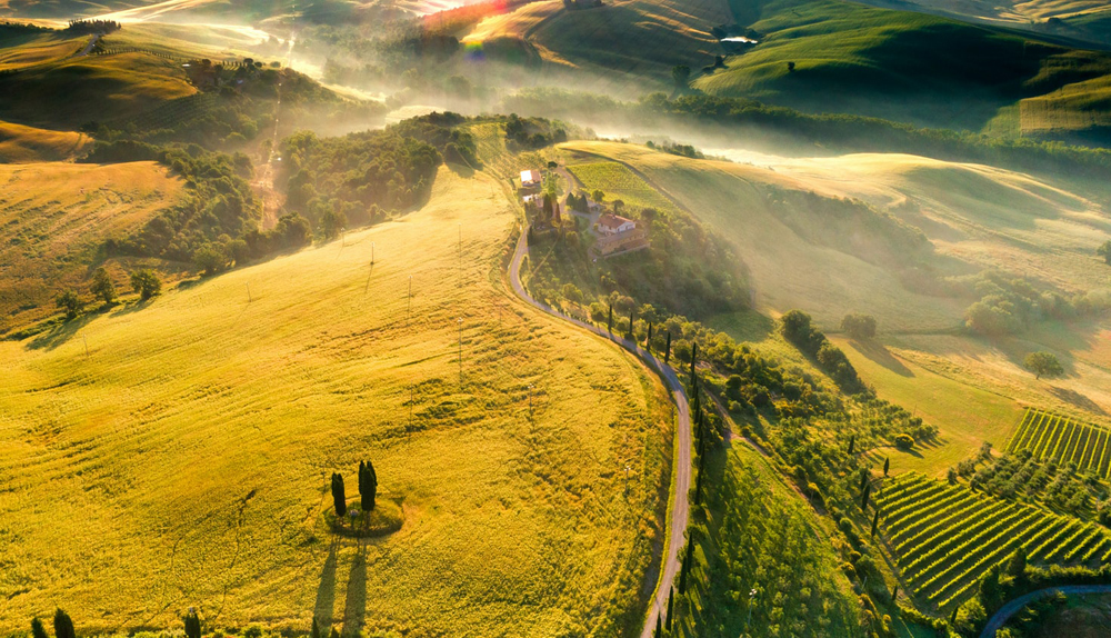 Overhead view of foggy, green fields