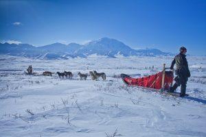 Family Alaskan cruises