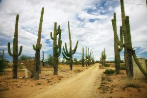 warm destinations Arizona