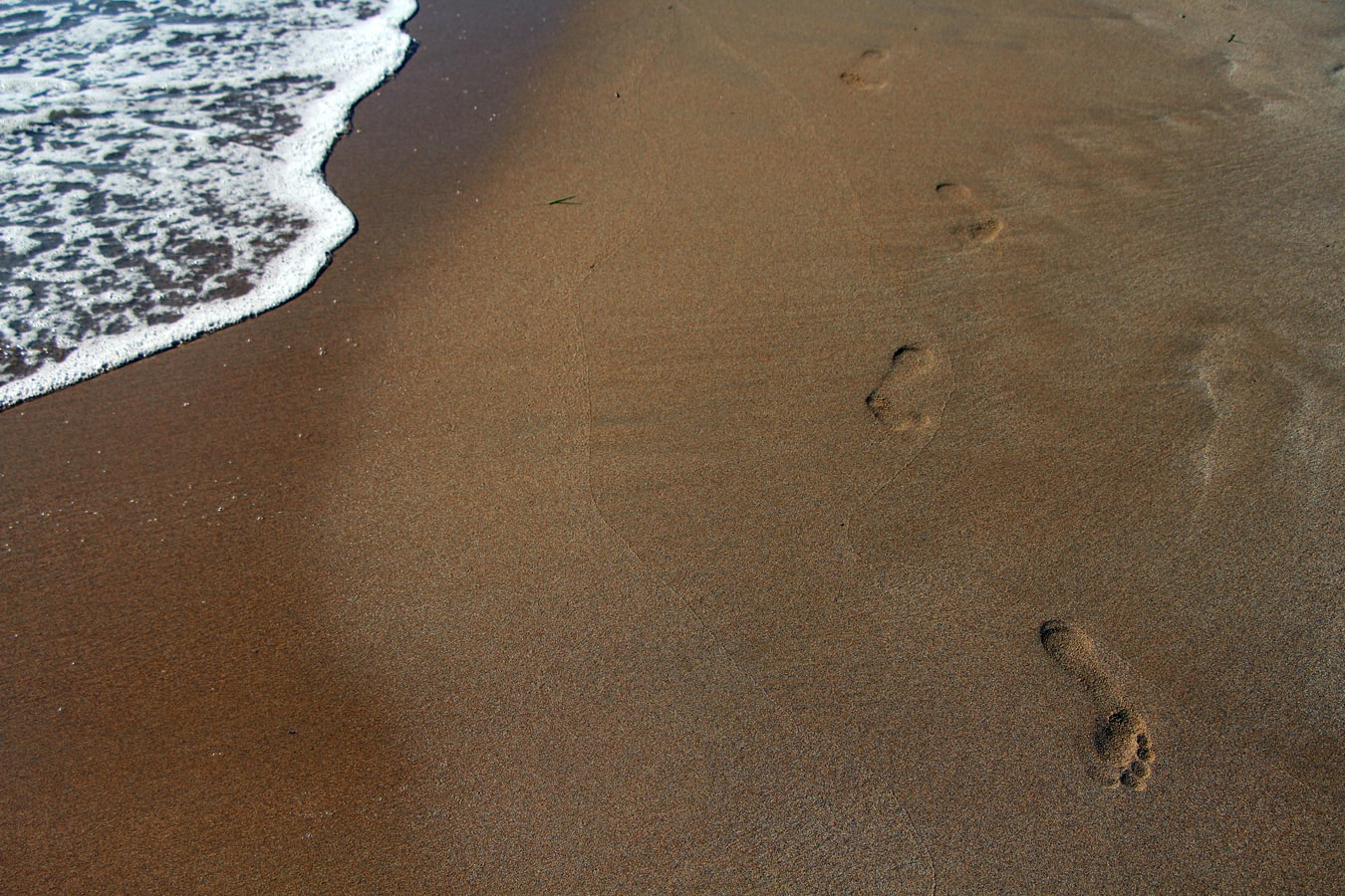 close up of footprints in the sand on a beach