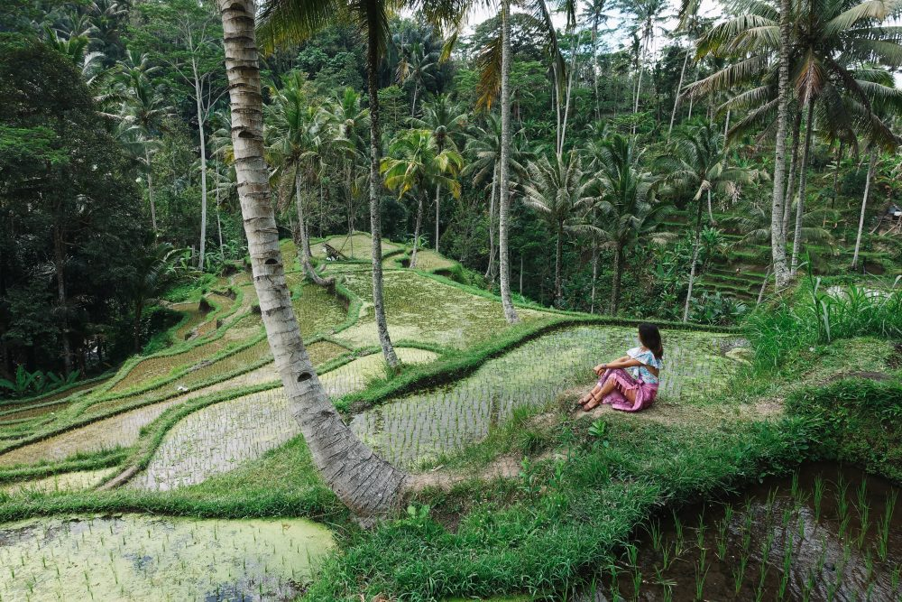 Top things to see in Bali