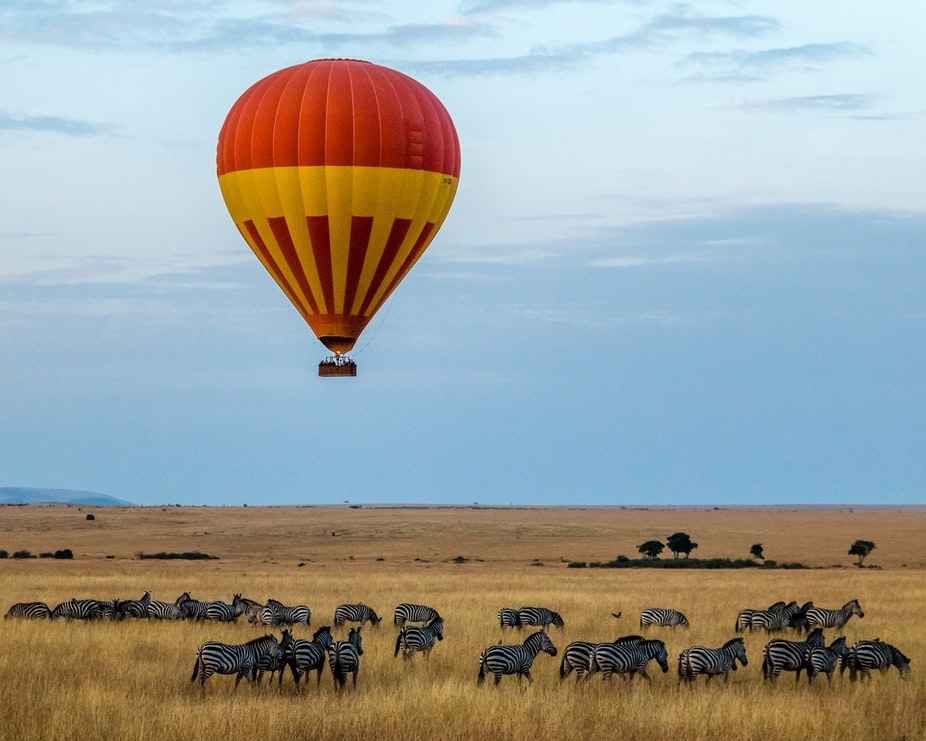 a hot air balloon floating over a field of zebras